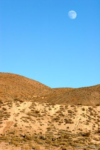 California, El Paso Mountain range, Mojave Desert, Red Rock Canyon State Park, arid, deserts, dried, dry, full moon, hills, joshua tree, moons, mountains, trees