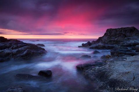 Asilomar State Beach, Pacific Grove, California, photo