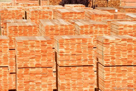 Humboldt County, PALCO, Pacific Lumber Company, Redwood Coast, Scotia, industrial, industries, industry, lumber mills, mill, stacks of timber, united states of america, usa, wood product