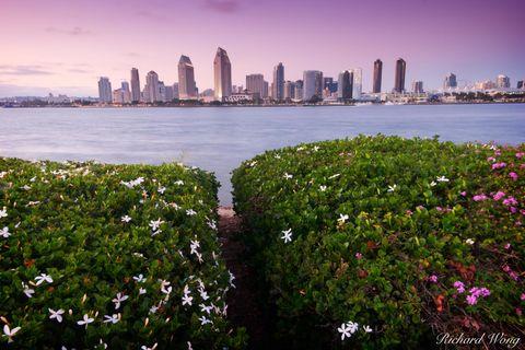 San Diego City Skyline, Coronado Island, California, photo