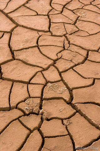 Dry Mud Cracks, Bombay Beach, California, photo