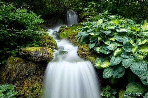Minter Gardens Waterfall, Chlliwack, British Columbia, photo