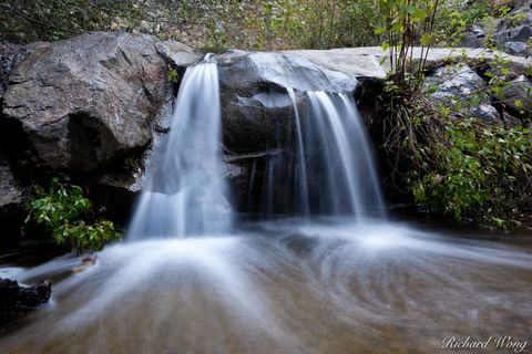 Big Dalton Canyon Wilderness Park, Glendora, Los Angeles County, San Dimas Experimental Forest, creek, creeks, forest, forests, nature, north america, outdoor, outdoors, outside, rainfall, san gabriel