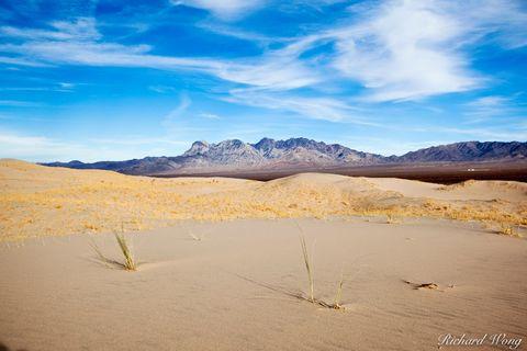 Mojave Desert, arid, dry, dune, hill, hills, kelso dunes, landscape, landscapes, mojave national preserve, national parks, nature, outdoors, providence mountains, san bernardino county, sand dunes, so