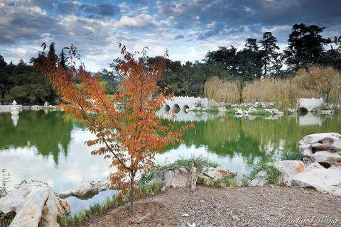 asian, autumn leaves, classical chinese garden, fall color, foliage, garden of flowing fragrance, huntington library and botanical gardens, lake of reflected fragrance, liu fang yuan, pagoda, pond, po