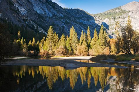 Trees Reflected in Mirror Lake, Yosemite National Park, California, photo