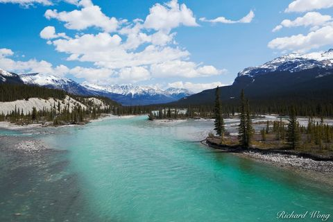 alberta, banff national park, canada, canadian rockies, cold, color image, colour image, day, daylight, daytime, glacial water, horizontal format, icefields parkway, landscape, landscape photography,