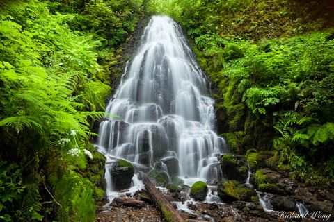 Fairy Falls, Columbia River Gorge National Scenic Area, Oregon, photo