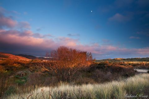 Limantour Spit at Sunset, Point Reyes National Seashore, California, photo