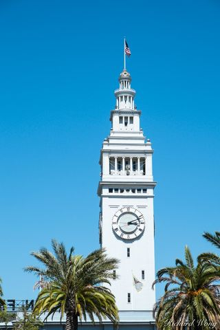 building, city, clock, clock tower, ferry building, justin herman plaza, nature, northern california, outdoors, outside, palm trees, san francisco, the embarcadero, travel, united states of america, u