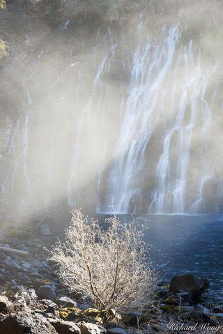 burney falls, forest, godbeam, landscape, mcarthur-burney falls memorial state park, mist, nature, northern california, outdoors, outside, scenery, scenic, shasta county, sunbeam, sunlight, united sta