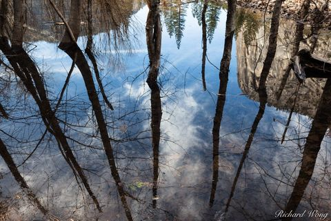 California, forest, forests, landscape, landscapes, mariposa county, mirror lake, nature, outdoor, outside, reflections, scenery, scenic nature, sierra nevada mountains, spring, tenaya creek, trees, u