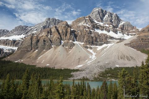 a.b, alberta, banff national park, bow lake, canada, canadian rockies, crowfoot glacier, crowfoot mountain, forest, freshwater, glaciers, ice, icefields parkway, landscape, mountains, nature, north am