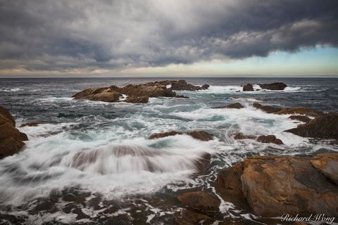 Point Lobos State Natural Reserve, California, photo