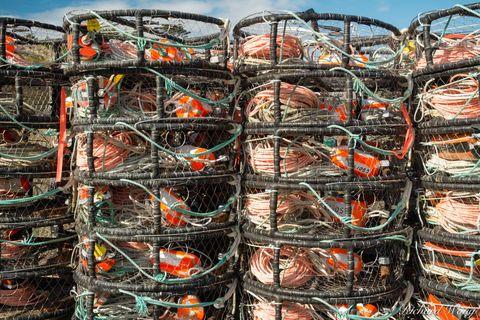 Crab Pot Traps, Bodega Bay, California, photo
