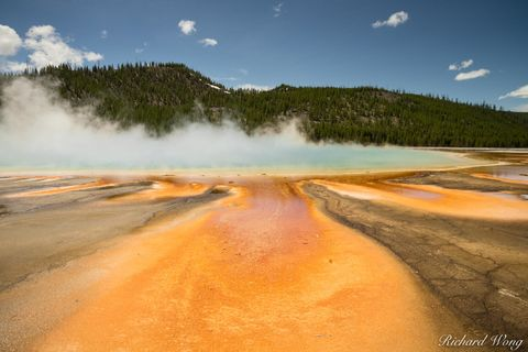 bacteria, bacterial mat, colorful, colors, dawn, geothermal activity, grand prismatic spring, heat, hot, hot spring, iconic landmark, landscape, midway geyser basin, national park system, nature, nort