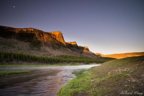 Madison River at Sunrise, Yellowstone National Park, Wyoming, photo