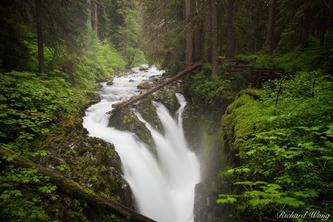 Sol Duc Falls, Olympic National Park, Washington, photo