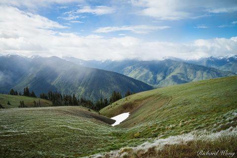 Hurricane Ridge, Olympic National Park, Washington, photo