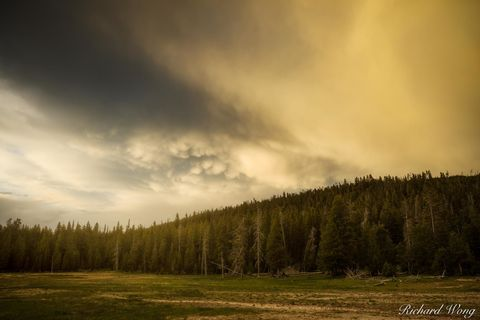 dawn, dusk, evening, forest, landscape, mammatus clouds, national park system, nature, north america, np, nps, outdoors, outside, rocky mountains, scenery, scenic, storm, stormy, sunset, supervolcano,