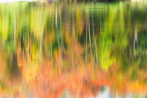 Peter Lik One | Prints Worth A Million Dollars?