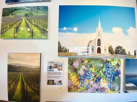 Bodega Art Gallery Prints
