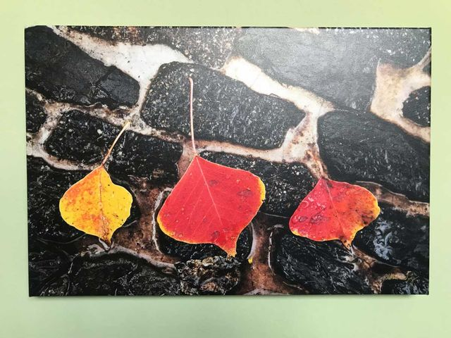 """Chinese Garden"" - Canvas Gallery Wrap"