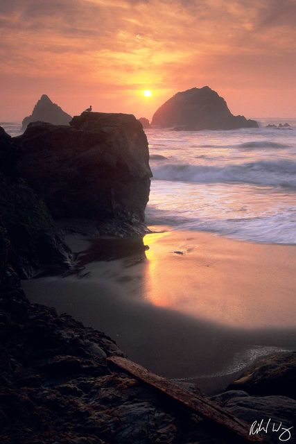 Seal Rocks at Sunset, San Francisco, California, Photo