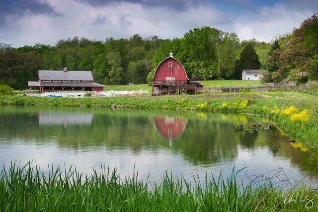Seed Savers Heritage Farm