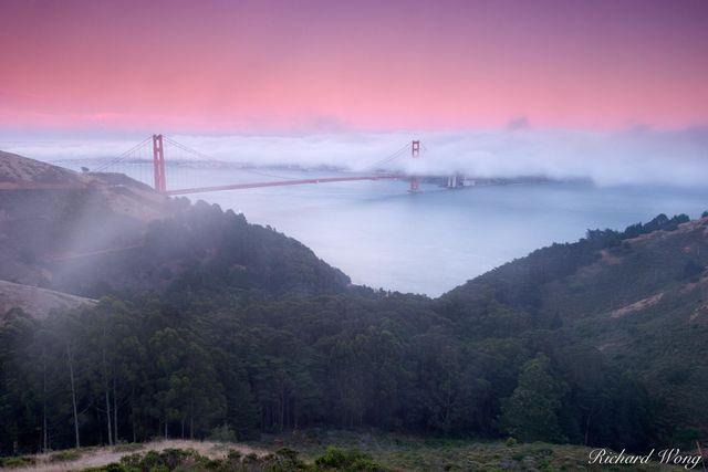 Twilight Fog print