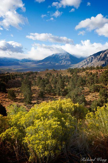 Owens Valley Overlook from U.S. Highway 395, Eastern Sierra, California, photo