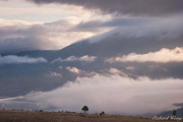 Sangre de Cristo Mountains Sunrise, Moreno Valley, New Mexico