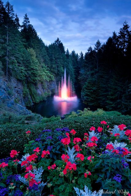 Ross Fountain Night View at The Butchart Gardens, Vancouver Island, B.C., photo