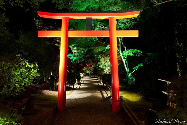 Japanese Garden at Night - The Butchart Gardens, Vancouver Island, B.C., photo