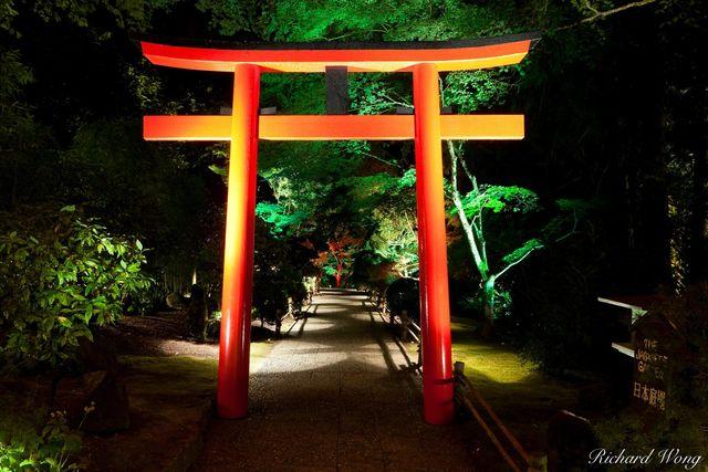 Japanese Garden at Night - The Butchart Gardens, Vancouver Island, B.C.