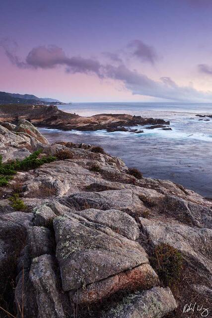 Headland Cove print