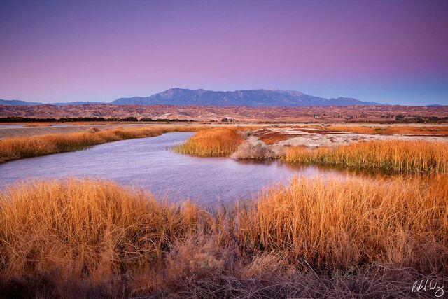 San Jacinto Wildlife Area print