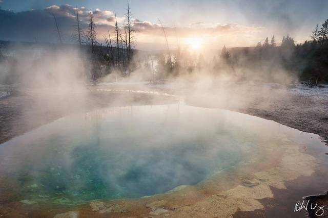 Morning Glory Pool in Upper Geyser Basin, Yellowstone National Park, Wyoming, photo