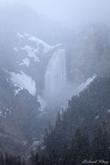 Lower Yellowstone Falls in Snow Storm at North Rim, Yellowstone National Park, Wyoming, photo