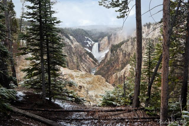 Grand Canyon of the Yellowstone Scenic View from Artist Point with Lower Yellowstone Falls in Distance, Yellowstone National Park, Wyoming, photo