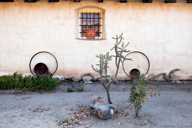 Anthropomorphized Face, Garden, Mission San Antonio de Padua, Monterey County, California, photo