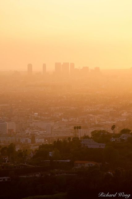 West L.A. Skyrises at Sunset from Griffith Park, Los Angeles, California, photo