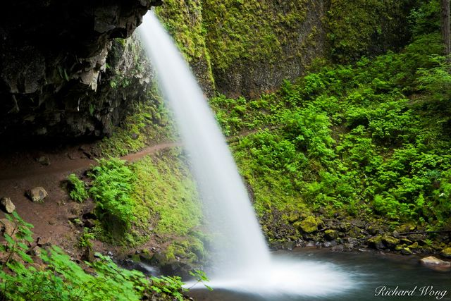 Ponytail Falls, Columbia River Gorge National Scenic Area, Oregon, photo