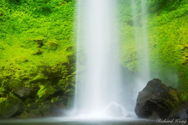 Elowah Falls / John B. Yeon State Park, Columbia River Gorge National Scenic Area, Oregon, photo