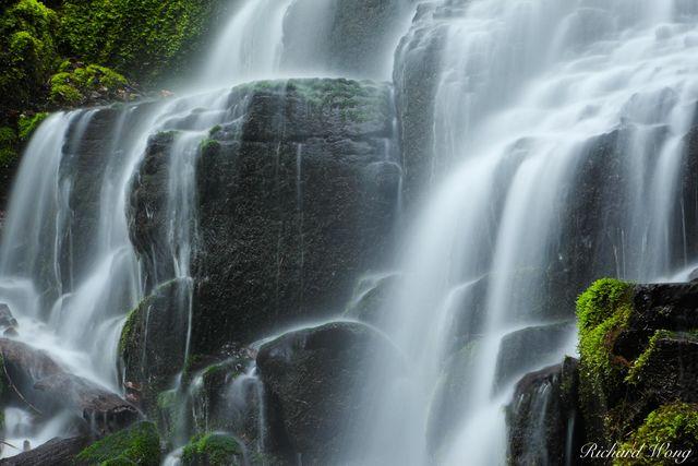 Fairy Falls, Columbia River Gorge National Scenic Area, Oregon, photo