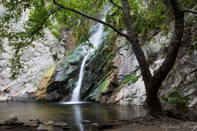 Sturtevant Falls at Big Santa Anita Canyon, Angeles National Forest, California, photo