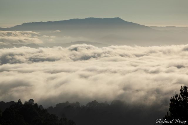 Vollmer Peak Scenic View of Bay Area Fog at Sunset With Mount Tamalpais in Background, Tilden Regional Park, California, photo