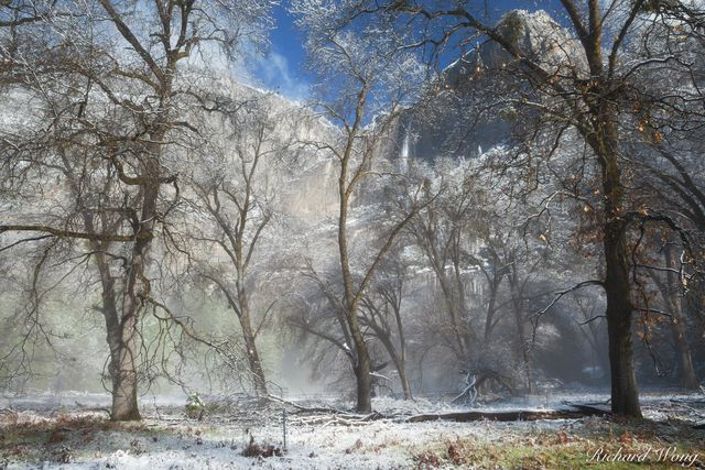 Yosemite Falls After Spring Snowstorm, Yosemite National Park, California, photo