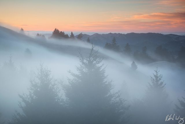 Fog Rolling Over Bolinas Ridge, Mount Tamalpais State Park, California, photo