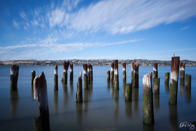 Port Costa Old Pier Pilings, Contra Costa County, California, Photo